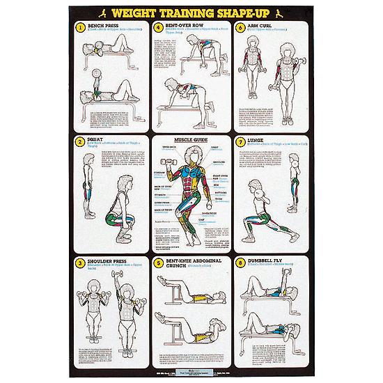 Self Instruction Weight Training Poster Weight Training Poster Set