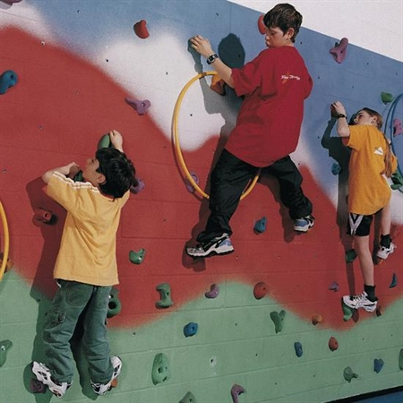 Build Your Own Climbing Wall Kit - 24'L x 8'H