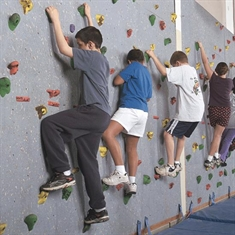 Traverse Wall® Climbing System - 4' x 8' Panel