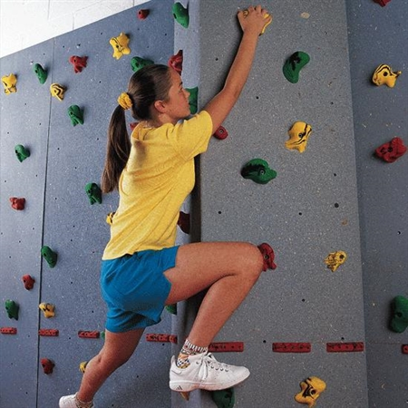 Everlast Modular Climbing Obstacle