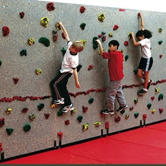 Standard™ Traverse Wall® Packages - 20'