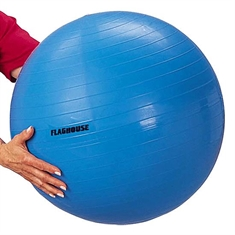 FlagHouse Exercise Ball - 26''