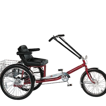Single Rider Trike with Full - Support Seat - 1 - Speed - Kids Special Needs Adapted Ride Ons