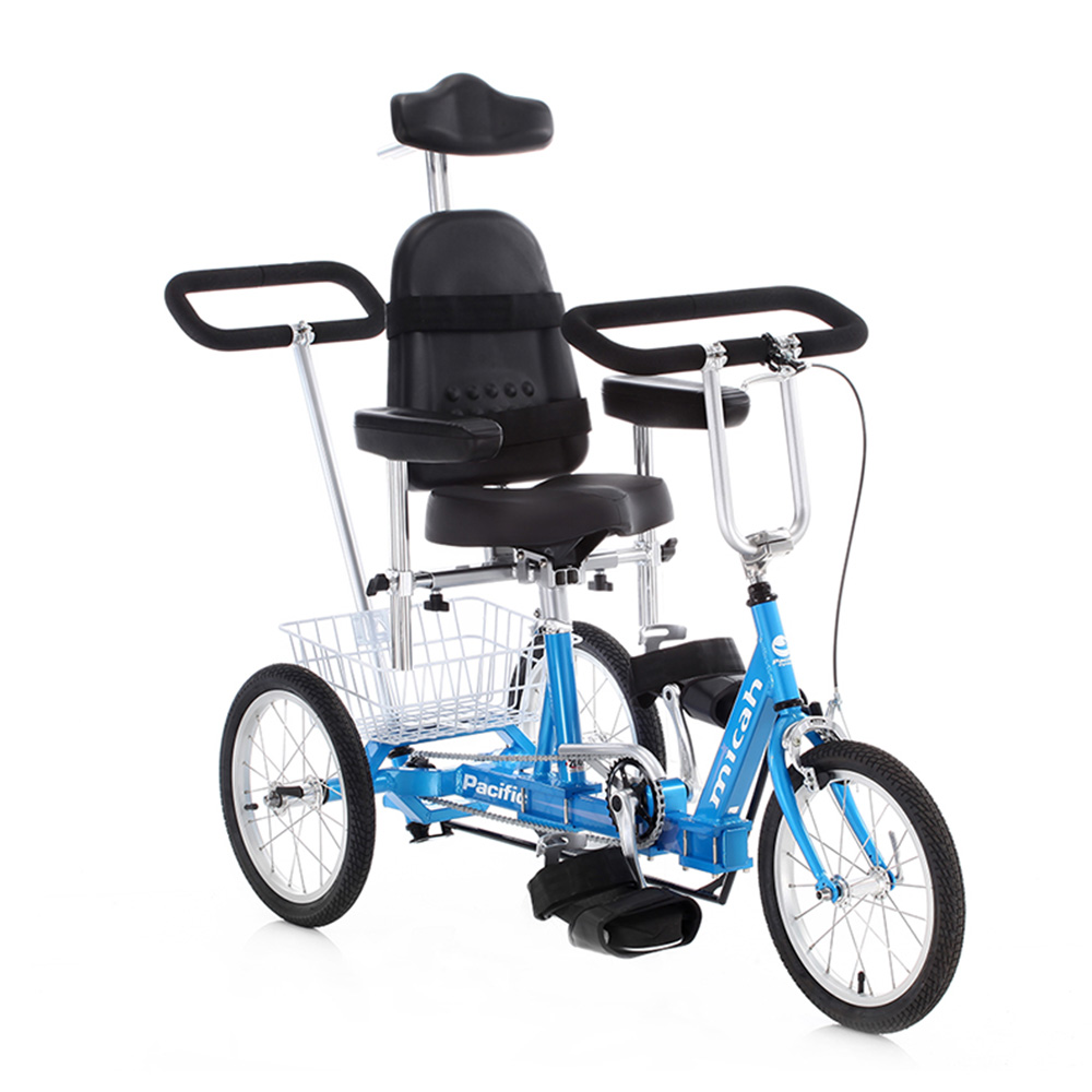 Micah Special Needs Tricycle Flaghouse