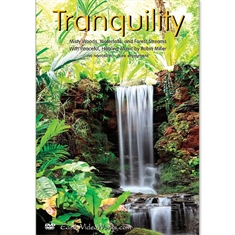 Tranquility Relaxation DVD