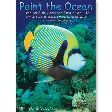 Paint the Ocean DVD - Special Needs Visual Effects Equipment