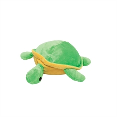 Weighted Turtle