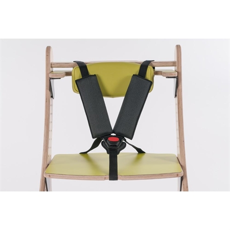Zoomi Chair 5 pt Harness
