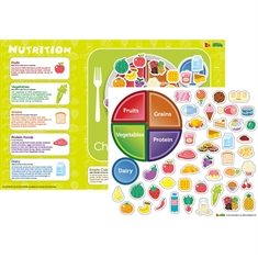 Nutritional Magnetic Wall Sticker
