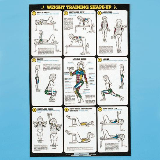 Self - Instruction Weight Training Poster - Free - Weight ...