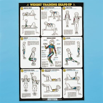 self  instruction weight training poster  free  weight