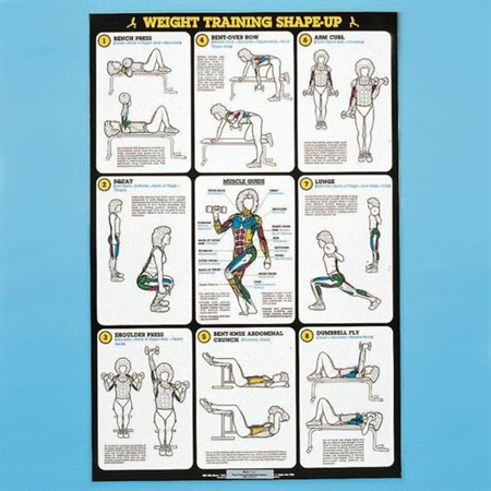 Self - Instruction Weight Training Poster - Free - Weight Exercises