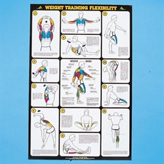 Self - Instruction Weight Training Poster - Weight Training Flexibility