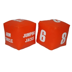 Fitness Dice Set